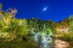 Lucas-Rossi-Photography-Eden-Gardens-3